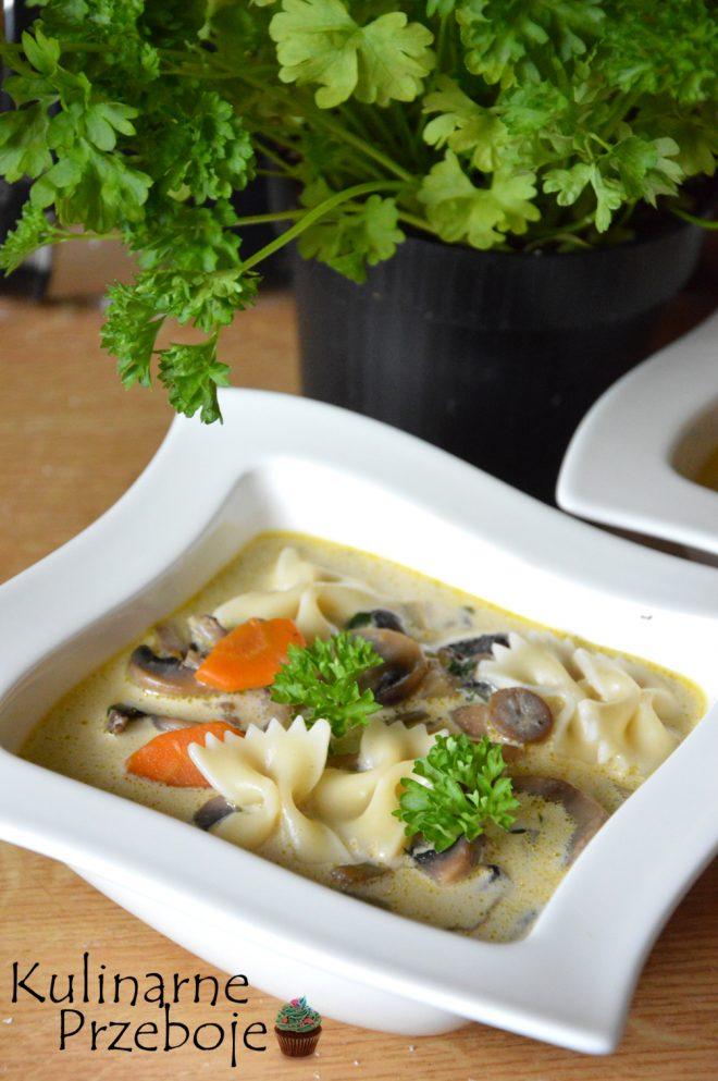 Zupa z pieczarek na bulionie na obiad
