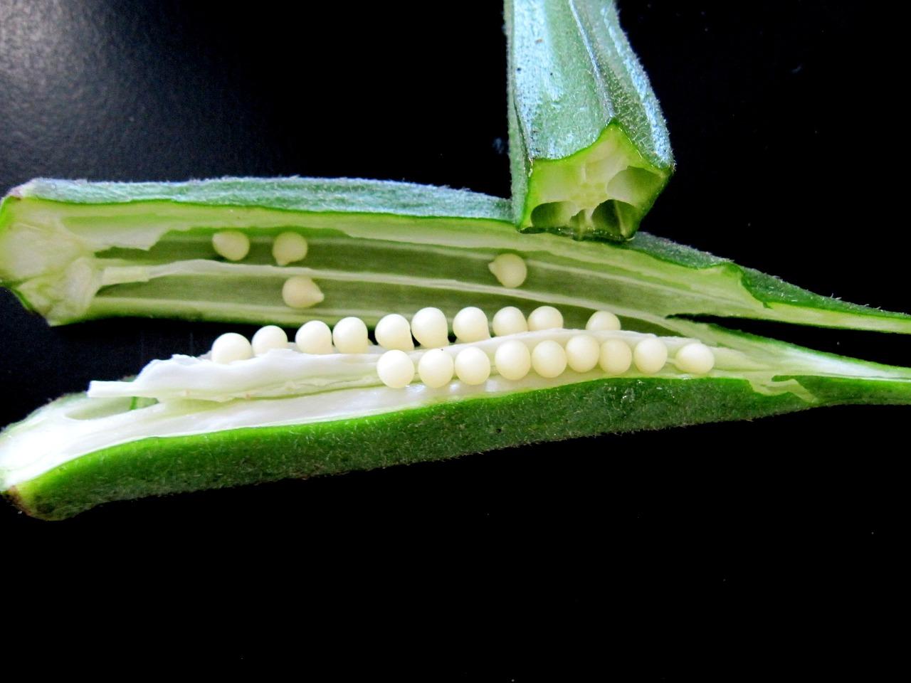 Warzywo - Okra