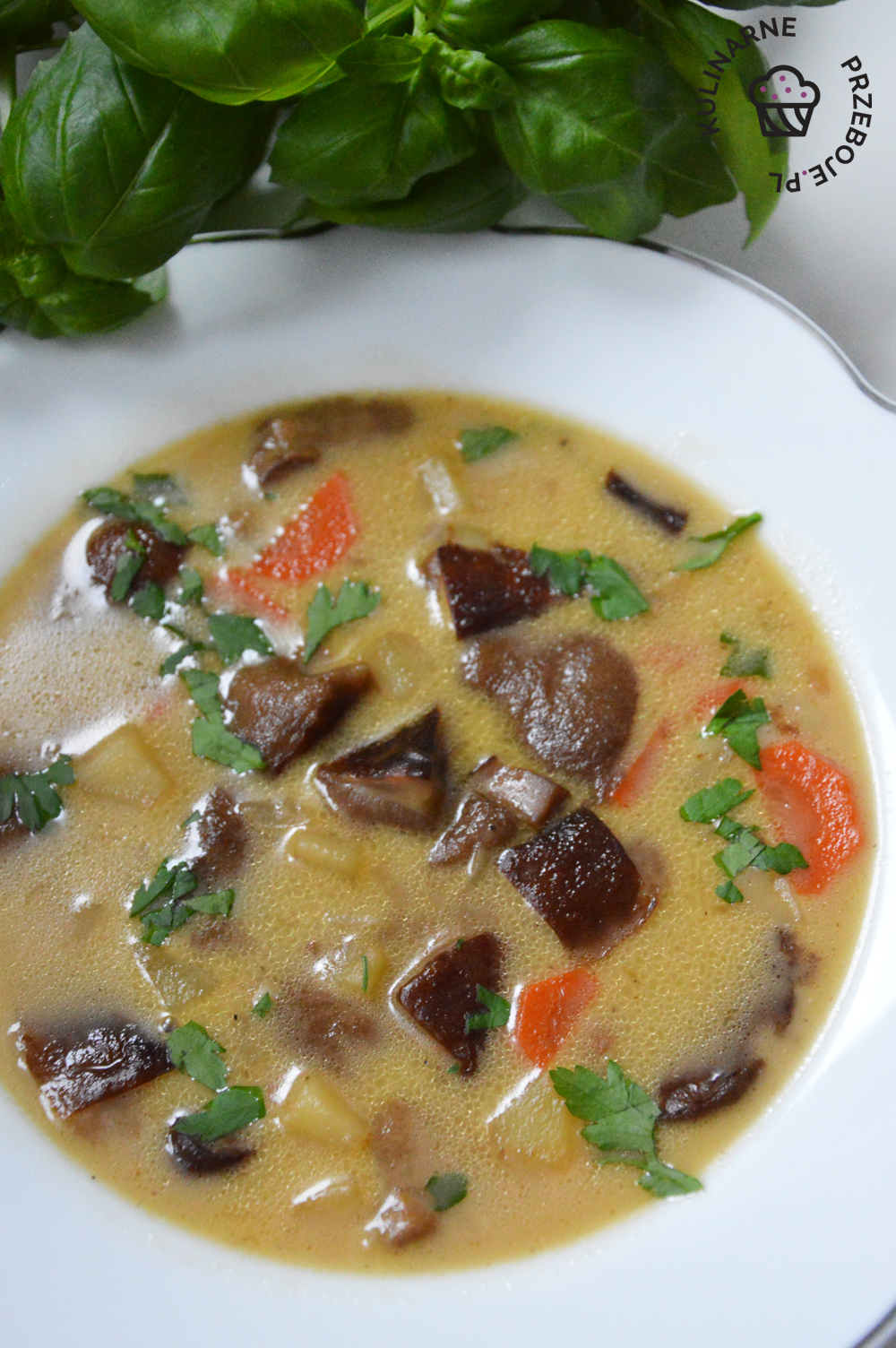 zupa grzybowa ze swieżych grzybów