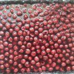 galaretka z wiśniami